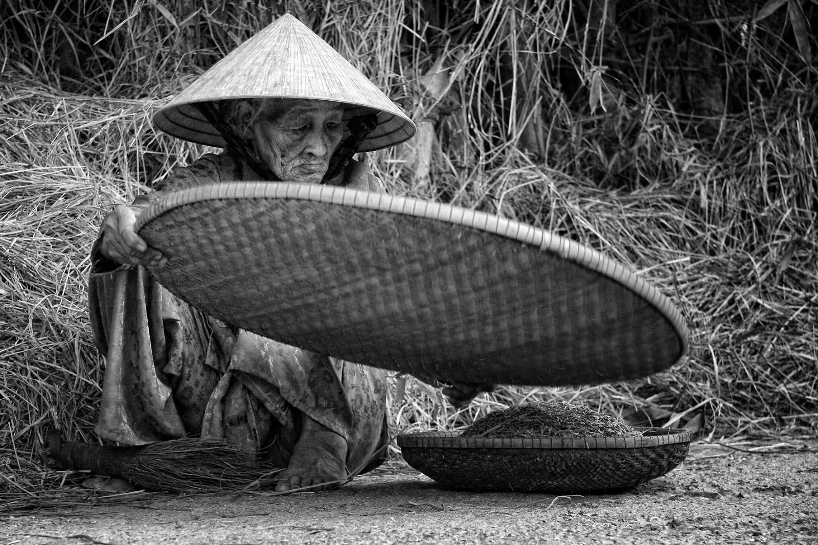Mẹ già - Phong thủy Trọng Hùng