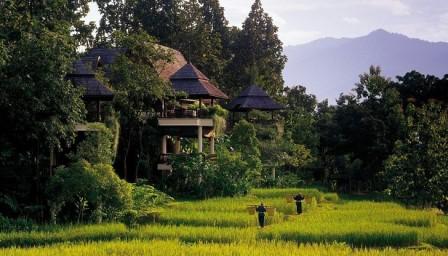 Khu bìa rừng Thailand