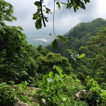 Núi rừng ngoại cảnh – Phong thủy Trọng Hùng