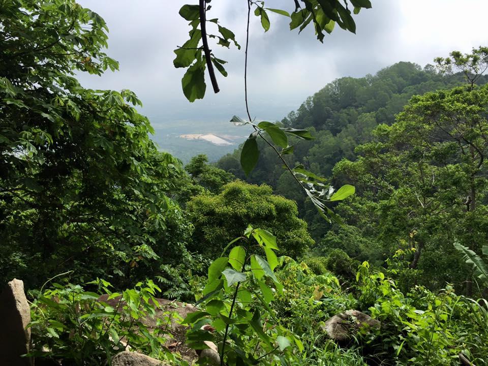 Núi rừng ngoại cảnh - Phong thủy Trọng Hùng