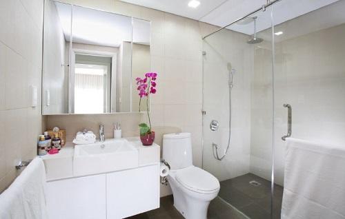 phong thủy toilet - phong thủy trọng hùng