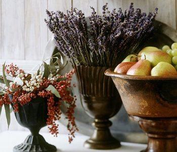 hoa oải hương – phong thủy trọng hùng