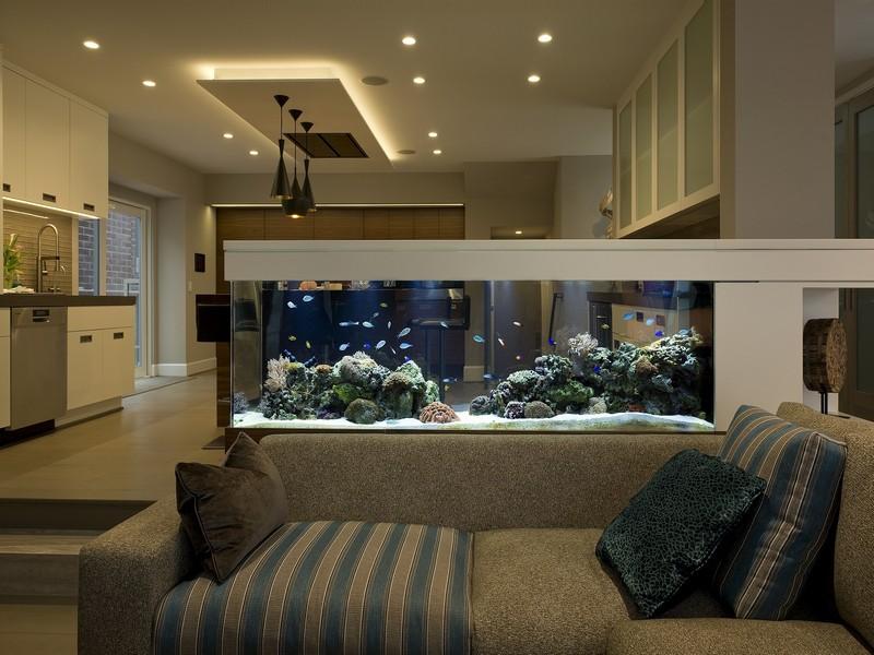 bể cá - phong thủy trọng hùng