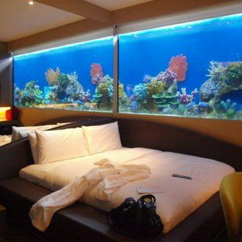 bể cá – phong thủy trọng hùng